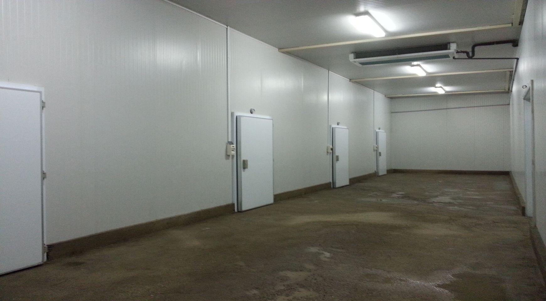 location hangar blida blida alg rie. Black Bedroom Furniture Sets. Home Design Ideas