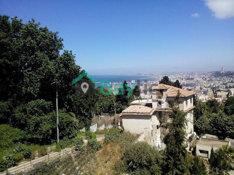 Agence immobili re agence immobili re le fouineur hydra for Agence immobiliere alger